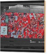 Swiss Train To Zurich Wood Print