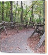 Switchback Walkway Wood Print