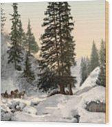 Switzerland: Davos, C1895 Wood Print