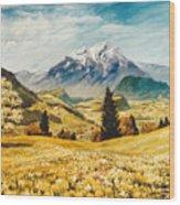 Switzterland Wood Print