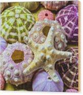 Syarfish And Sea Urchins Wood Print