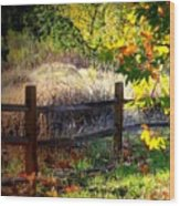 Sycamore Grove Fence 1 Wood Print
