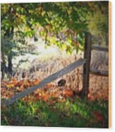Sycamore Grove Series 8 Wood Print