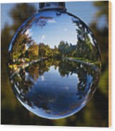 Sycamore Pool Through A Glass Eye Wood Print