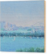 Sydney Harbour And The Opera House Wood Print