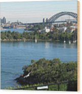 Sydney Harbour Wood Print