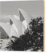 Sydney Opera House Black And White Wood Print