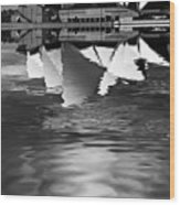 Sydney Opera House Reflection In Monochrome Wood Print