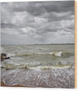 Sylvan Park Beach Wood Print