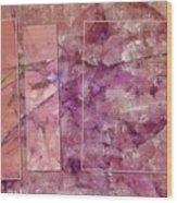 Sympodia Framework  Id 16098-012216-28902 Wood Print