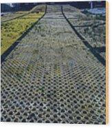 Synthetic Ski Slopes - Pista Da Sci... Sintetico Wood Print