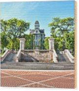 Syracuse University Hall Of Languages Wood Print
