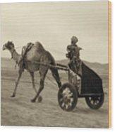 Syria: Camel Race, C1938 Wood Print