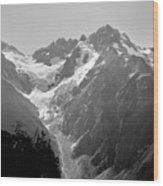 T-304403 Mt. Formidable Wood Print