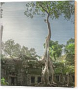 Ta Prohm Temple  Wood Print