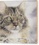 Tabby Cat Jellybean Wood Print