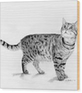 Tabby Cat Looking Up Wood Print