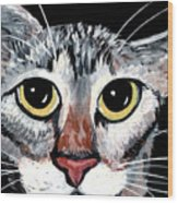 Tabby Eyes Wood Print