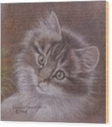 Tabby Kitten Wood Print by Dorothy Coatsworth
