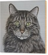 Tabby-lil' Bit Wood Print by Megan Cohen