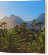 Table Mountain 1 Wood Print