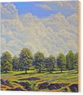Table Mountain In Bloom Wood Print