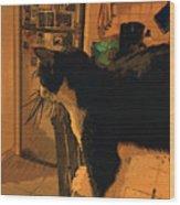 Taddeo E Il Frigo Wood Print