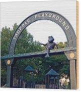 Tadpole Playground Boston Wood Print