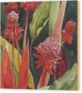 Tahiti Red Wood Print