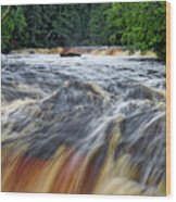 Tahquamenon Lower Falls Upper Peninsula Michigan Vertical 01 Wood Print