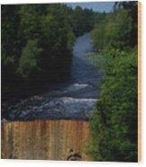 Tahquamenon Lower Falls Upper Peninsula Michigan Vertical 07 Wood Print