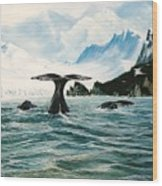 Tailing Whales Prince William Sound Wood Print