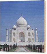 Taj Mahal Landscape Wood Print
