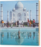 Taj Mahal  Wood Print by Nila Newsom