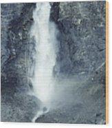 Takakkaw Falls Wood Print