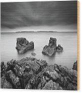 Take A Breath Wood Print by Pawel Klarecki