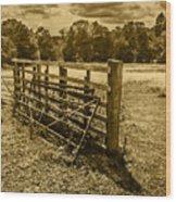 Take A Fence Wood Print
