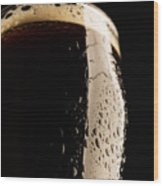 Take A Sip Of Irish Beer Wood Print