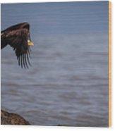 Takeoff Wood Print