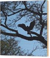 Taking Flight South Africa Wood Print