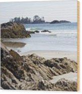 Long Beach Views Wood Print
