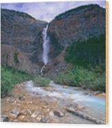 Takkakaw Falls Wood Print