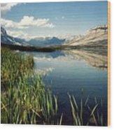 Talbot Lake Wood Print