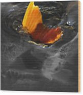 Tale Of The Wild Koi 3 Wood Print
