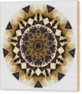 Talisman 2408 Wood Print