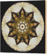 Talisman 2411 Wood Print