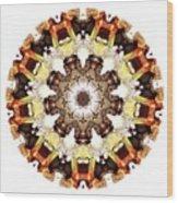 Talisman 2418 Wood Print