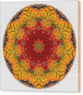 Talisman 2909 Wood Print