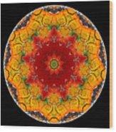 Talisman 2910 Wood Print