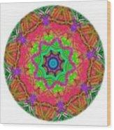 Talisman 3571 Wood Print